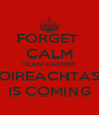 FORGET  CALM TRAIN HARDER OIREACHTAS IS COMING - Personalised Poster A4 size