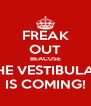 FREAK OUT BEACUSE THE VESTIBULAR IS COMING! - Personalised Poster A4 size
