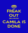 FREAK OUT BECAUSE CAMILA IS DONE - Personalised Poster A4 size