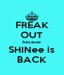 FREAK OUT because SHINee is BACK - Personalised Poster A4 size