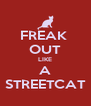 FREAK  OUT LIKE A STREETCAT - Personalised Poster A4 size
