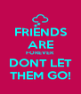 FRIENDS ARE FOREVER DONT LET THEM GO! - Personalised Poster A4 size