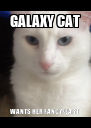 GALAXY CAT WANTS HER FANCYFEAST - Personalised Poster A4 size