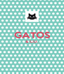 GATOS & CO.   - Personalised Poster A4 size