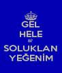 GEL HELE Bİ' SOLUKLAN YEĞENİM - Personalised Poster A4 size