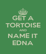 GET A TORTOISE AND NAME IT EDNA - Personalised Poster A4 size