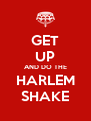 GET UP AND DO THE HARLEM SHAKE - Personalised Poster A4 size