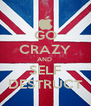 GO CRAZY AND  SELF DESTRUCT - Personalised Poster A4 size