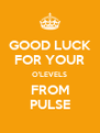 GOOD LUCK FOR YOUR O'LEVELS FROM PULSE - Personalised Poster A4 size