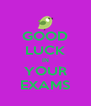 GOOD LUCK IN YOUR EXAMS - Personalised Poster A4 size