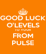 GOOD LUCK O'LEVELS TO YOUR FROM PULSE - Personalised Poster A4 size