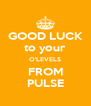 GOOD LUCK to your O'LEVELS FROM PULSE - Personalised Poster A4 size