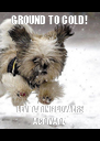 GROUND TO COLD! LEVITATING POWERS ACTIVATE - Personalised Poster A4 size