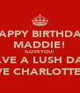 HAPPY BIRTHDAY MADDIE! ILOVEYOU! HAVE A LUSH DAY! LOVE CHARLOTTE:)xx - Personalised Poster A4 size