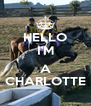 HELLO I'M  A CHARLOTTE - Personalised Poster A4 size