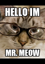 HELLO IM MR. MEOW - Personalised Poster A4 size