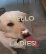 HELLO    LADIES! - Personalised Poster A4 size