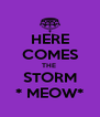 HERE COMES THE  STORM * MEOW* - Personalised Poster A4 size