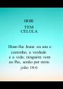 HOJE  TEM  CÉLULA   Disse-lhe Jesus: eu sou o caminho, a verdade  e a vida; ninguém vem ao Pai, senão por mim. joão 14:6 - Personalised Poster A4 size
