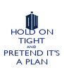 HOLD ON TIGHT AND PRETEND IT'S A PLAN - Personalised Poster A4 size