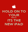 HOLD ON TO YOUR BALLS ITS THE NEW iPAD - Personalised Poster A4 size