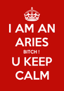 I AM AN ARIES BITCH ! U KEEP CALM - Personalised Poster A4 size