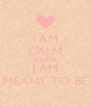 I AM CALM BECAUSE I AM MEANT TO BE - Personalised Poster A4 size