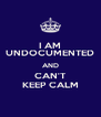 I AM UNDOCUMENTED AND CAN'T KEEP CALM - Personalised Poster A4 size