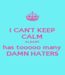 I CAN'T KEEP CALM ALBANY has tooooo many DAMN HATERS - Personalised Poster A4 size
