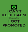 I CAN'T KEEP CALM BECAUSE I GOT PROMOTED - Personalised Poster A4 size