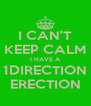 I CAN'T  KEEP CALM  I HAVE A 1DIRECTION ERECTION - Personalised Poster A4 size