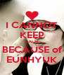 I CANNOT KEEP CALM BECAUSE of EUNHYUK - Personalised Poster A4 size