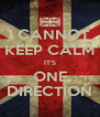 I CANNOT KEEP CALM IT'S ONE DIRECTION - Personalised Poster A4 size