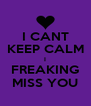 I CANT KEEP CALM I FREAKING MISS YOU - Personalised Poster A4 size