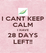 I CANT KEEP CALM I HAVE 28 DAYS LEFT!! - Personalised Poster A4 size