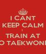 I CANT KEEP CALM I  TRAIN AT TKO TAEKWONDO - Personalised Poster A4 size