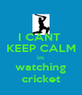I CANT  KEEP CALM im watching cricket - Personalised Poster A4 size