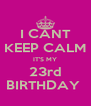 I CANT KEEP CALM IT'S MY 23rd BIRTHDAY  - Personalised Poster A4 size