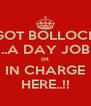 I GOT BOLLOCKS ..A DAY JOB IM IN CHARGE HERE..!! - Personalised Poster A4 size