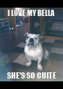 I LOVE MY BELLA SHE'S SO CUITE - Personalised Poster A4 size
