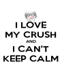 I LOVE MY CRUSH AND I CAN'T KEEP CALM - Personalised Poster A4 size