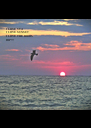 I LOVE SEA I LOVE SUNSET I LOVE THE BIRDS DIP!!! - Personalised Poster A4 size