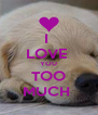 I  LOVE  YOU TOO MUCH  - Personalised Poster A4 size