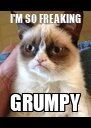I'M SO FREAKING GRUMPY - Personalised Poster A4 size