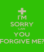 I'M SORRY CAN  YOU FORGIVE ME? - Personalised Poster A4 size