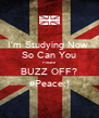 I'm Studying Now  So Can You Please BUZZ OFF? #Peace:) - Personalised Poster A4 size