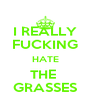 I REALLY FUCKING HATE THE  GRASSES - Personalised Poster A4 size