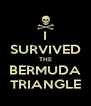 I SURVIVED THE BERMUDA TRIANGLE - Personalised Poster A4 size