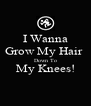I Wanna Grow My Hair  Down To My Knees!  - Personalised Poster A4 size