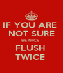 IF YOU ARE  NOT SURE BE NICE  FLUSH  TWICE  - Personalised Poster A4 size